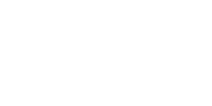 Clever Education Solutions logo white